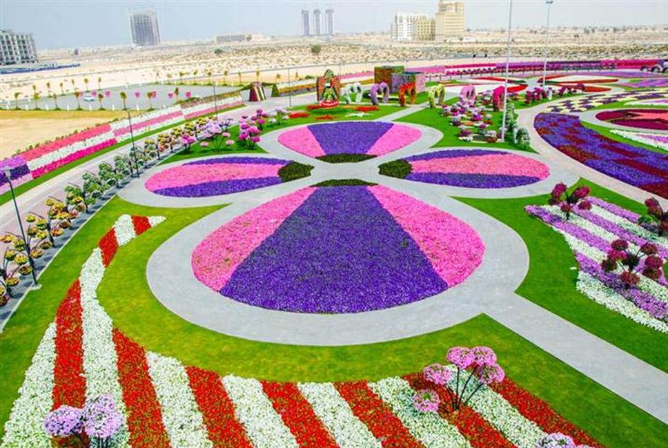 Dubai-Miracle-Garden,-Dubai