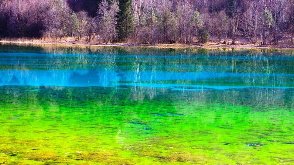 Five-Flower-Lake,-Jiuzhaigou-Valley,-China