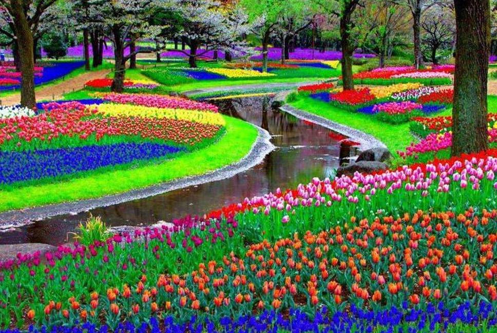 Keukenhof-Park,-Lisse,-The-Netherlands