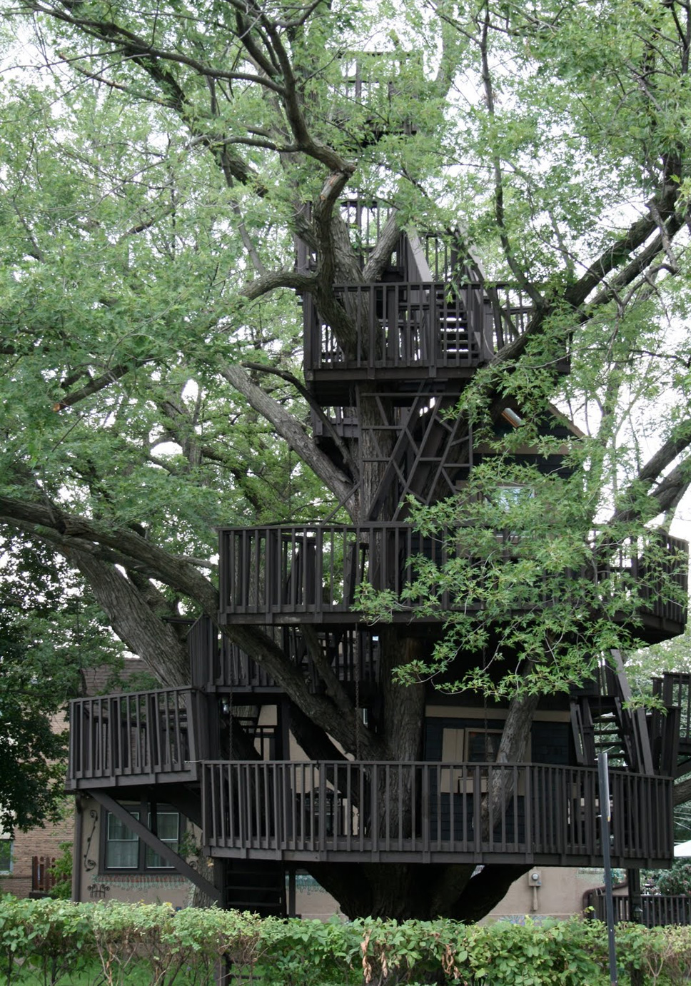 treehouse18