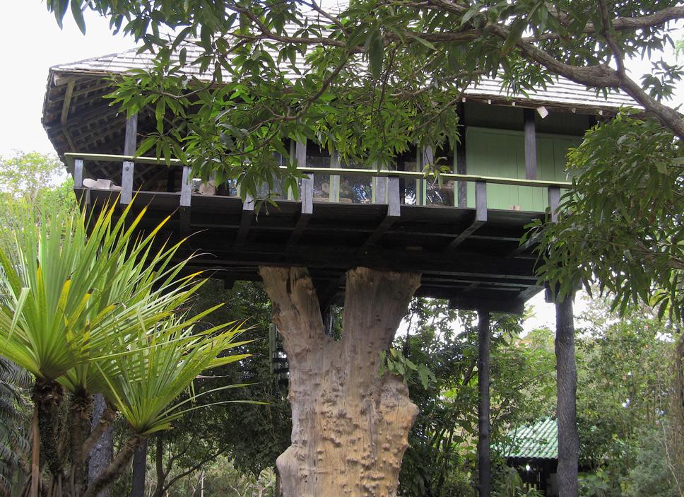 treehouse7