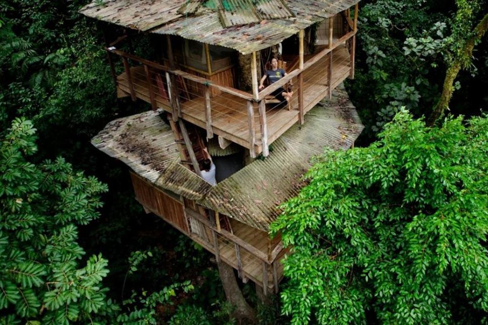 treehouse9