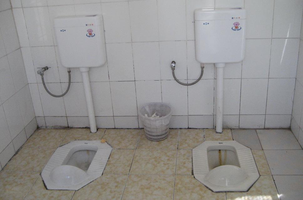 Curiosidade Saiba Como São Os Banheiros Em Vários Lugares