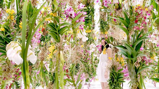 Floating-Flower-Garden_02-1