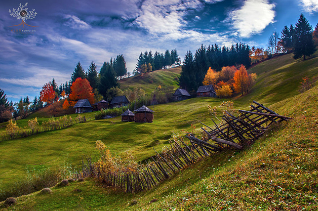 Transilvania6