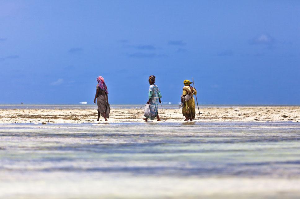 Zanzibar6