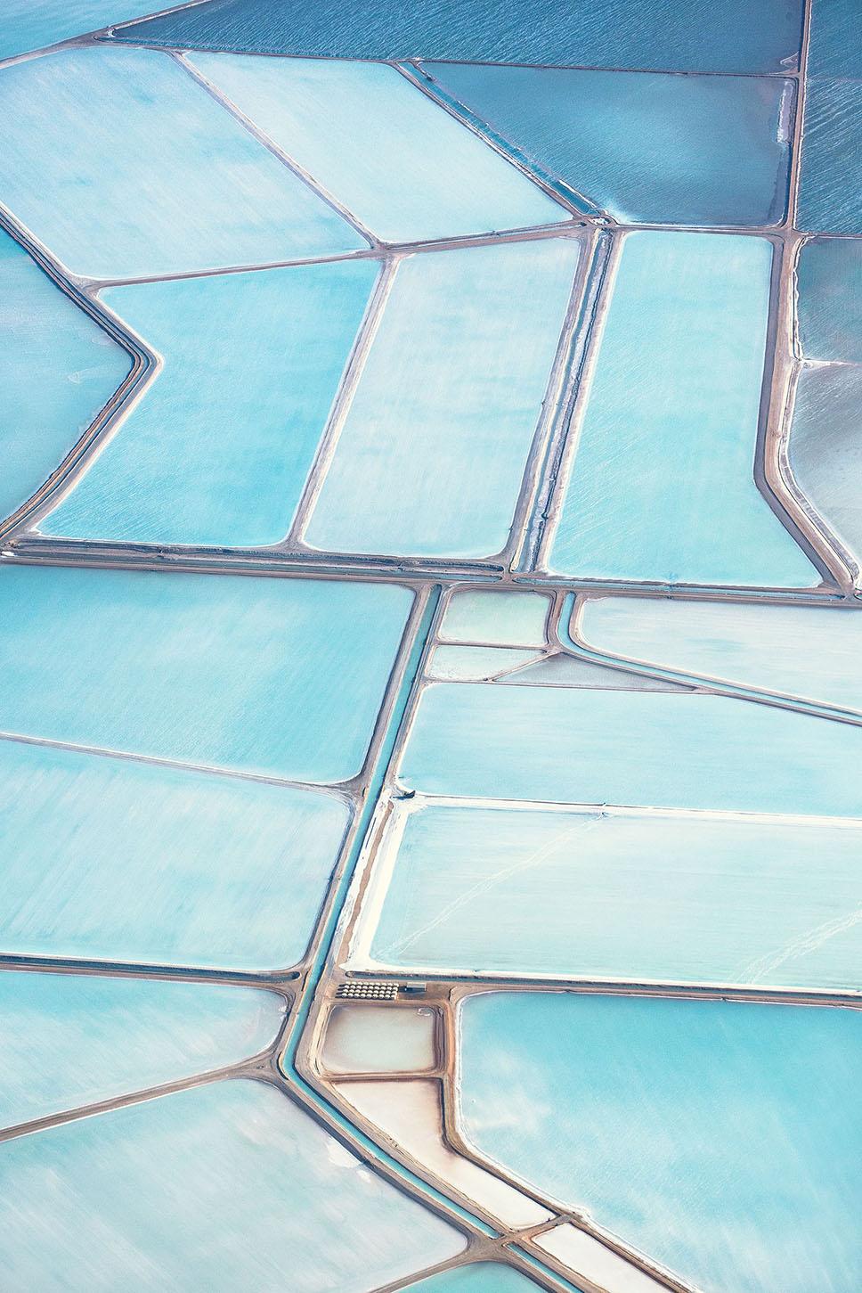 blue fields10
