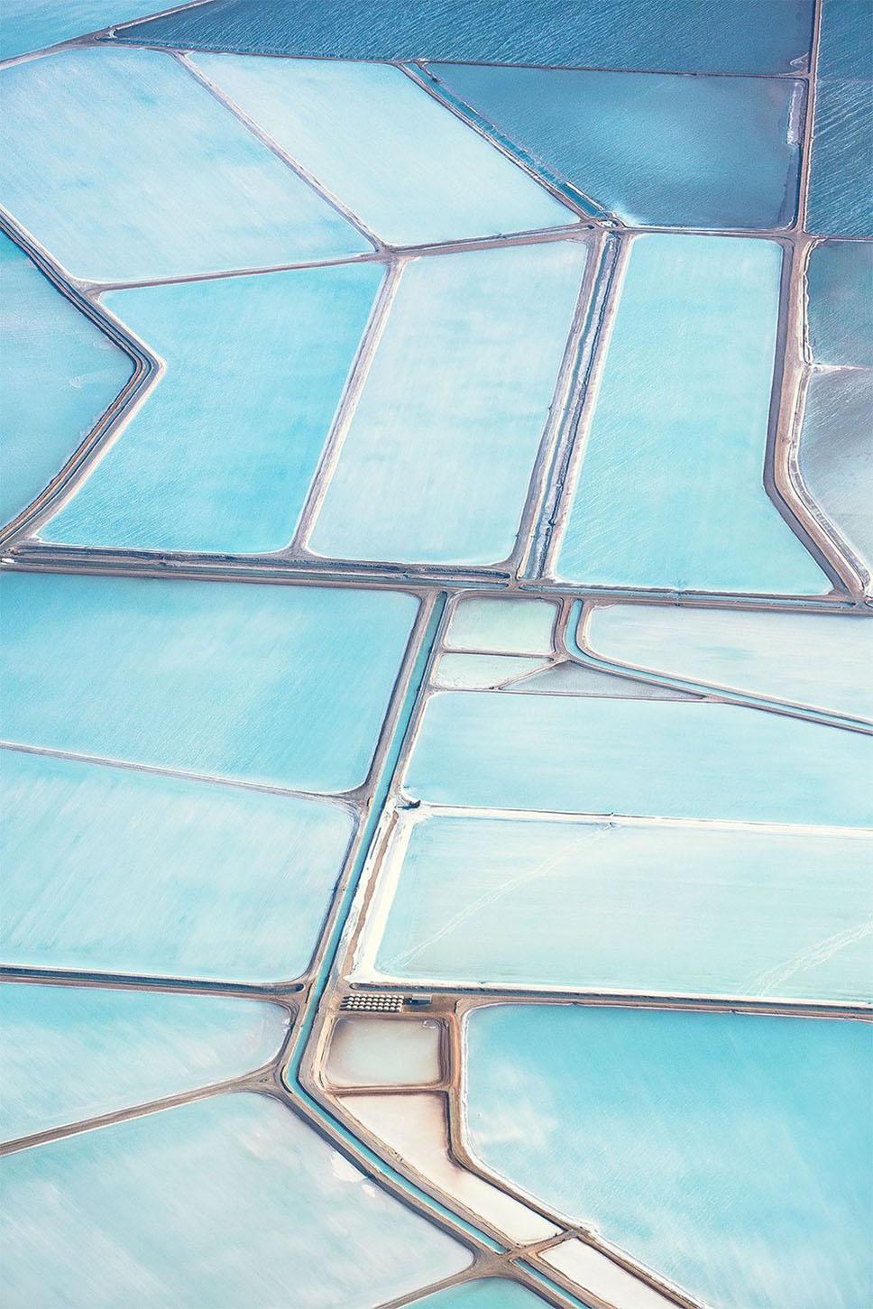 blue fields6