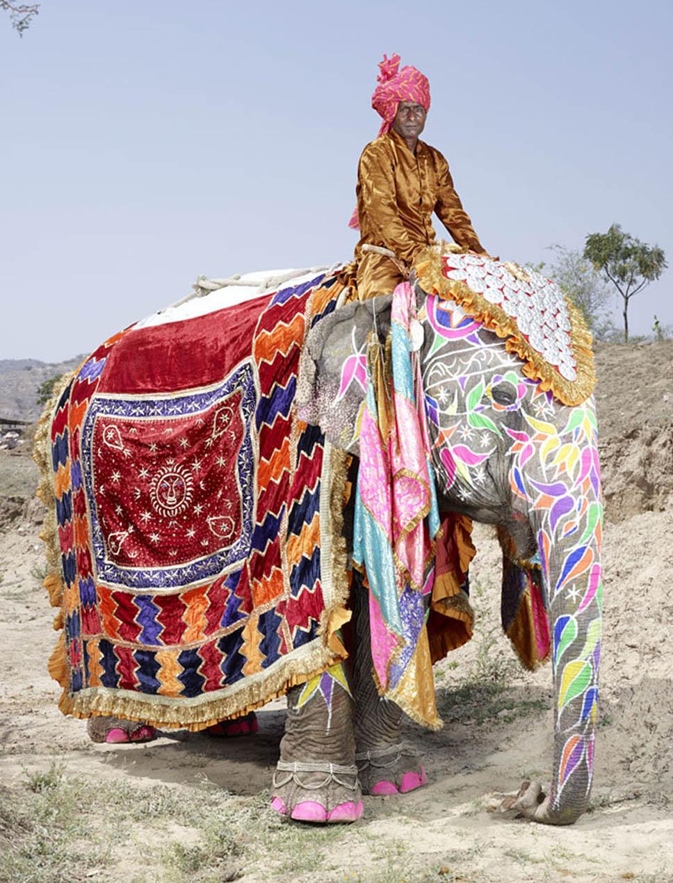 festival dos elefantes