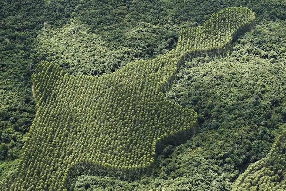 Brasil de cima14