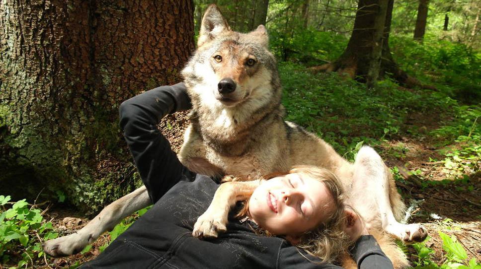 santuario-lobos2