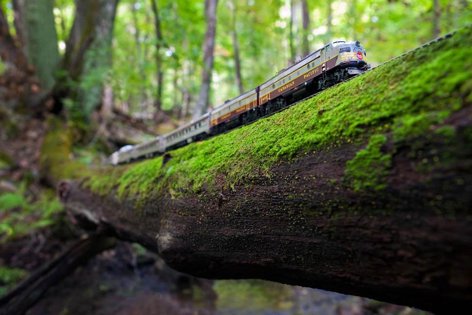 trem-canada (7)
