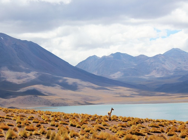 Bons motivos para curtir o Chile no inverno