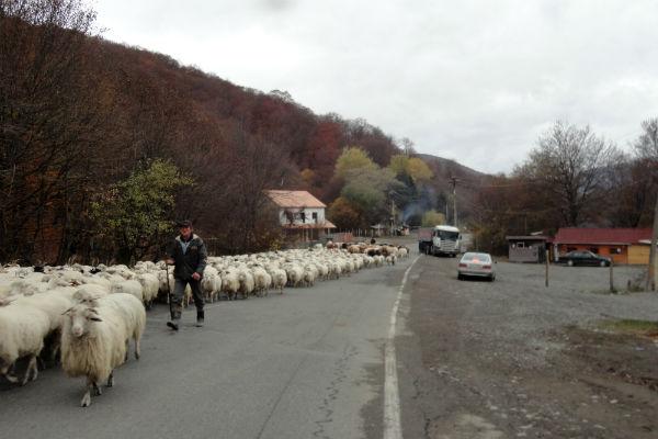 rodovia-militar-georgia