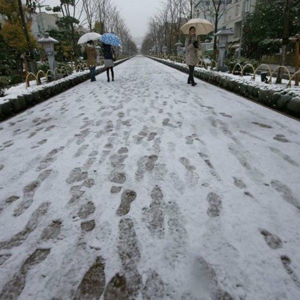 O que aconteceu quando nevou em Tóquio depois de 54 anos