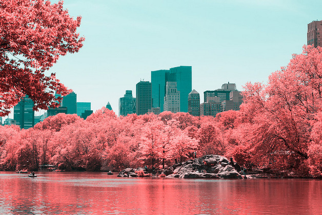 paolo-pettigiani-infrared-new-york-2