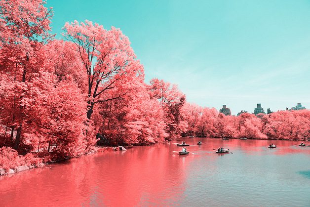 paolo-pettigiani-infrared-new-york-5