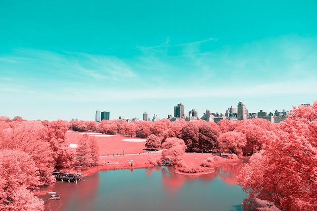 paolo-pettigiani-infrared-new-york-6