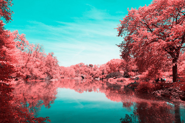 paolo-pettigiani-infrared-new-york-9