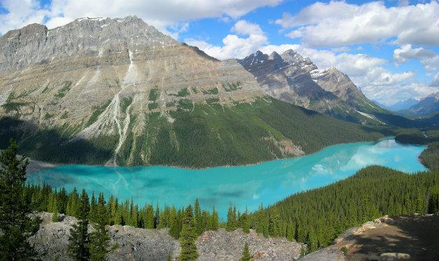 peyto_lake-banff_np-canada_wiki