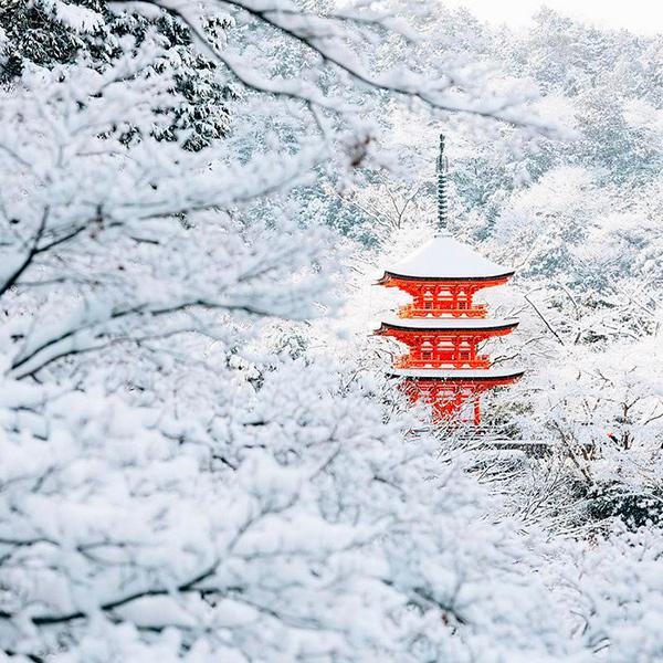 O nevão que caiu no Japão transformou a cidade de Quioto em cenário de conto de fadas