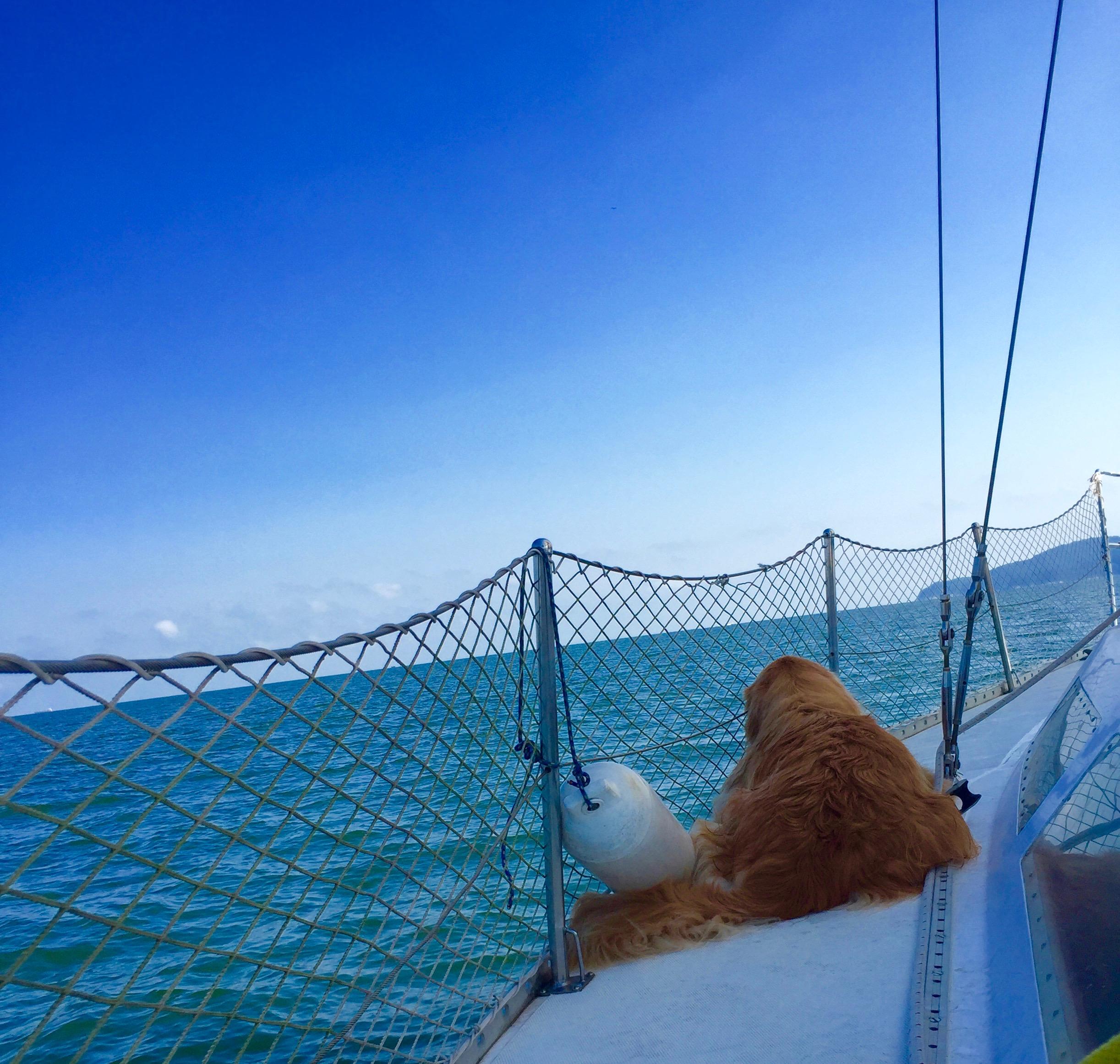 Sailing_Around_The_World_7