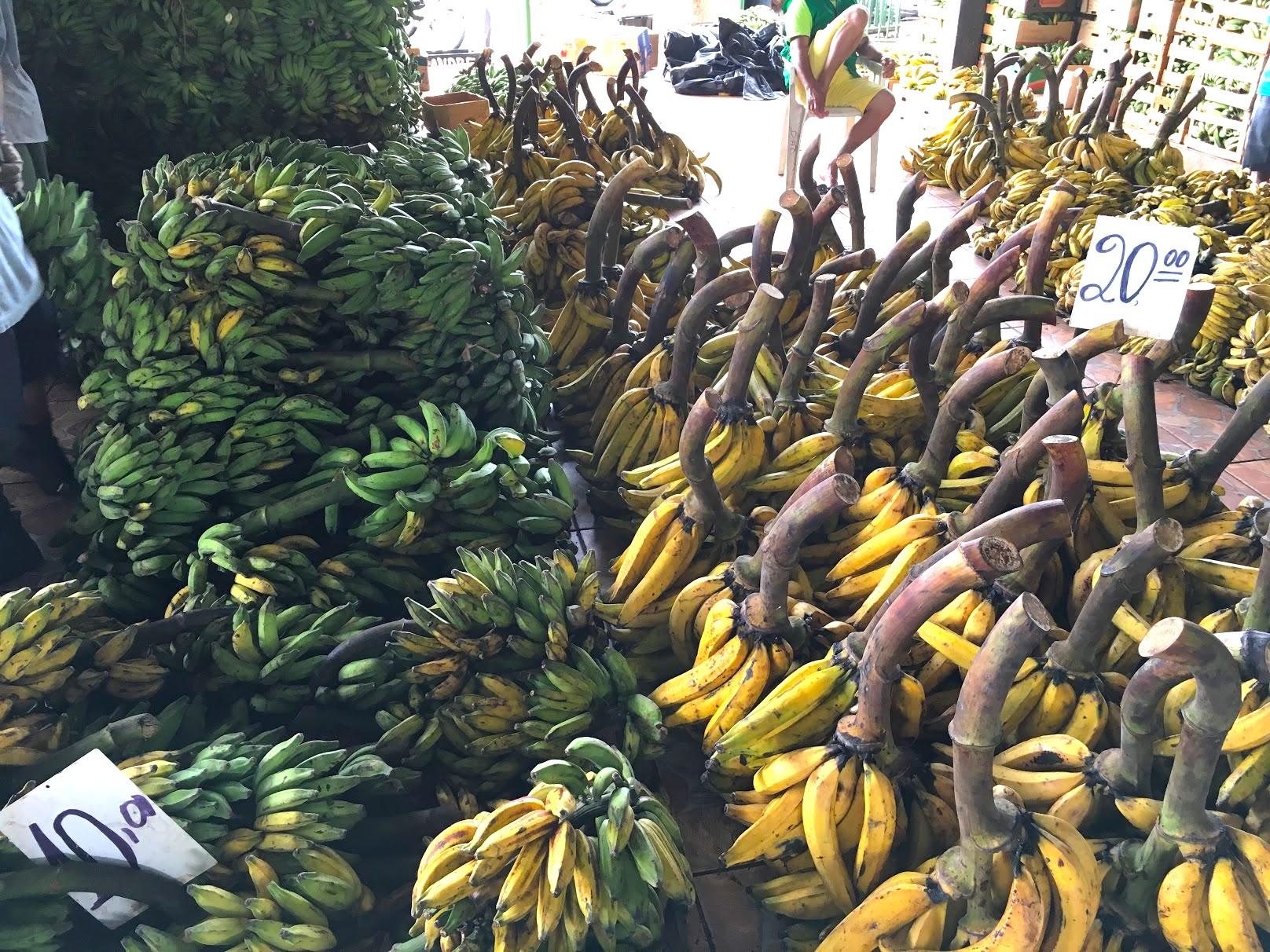 01-3 feira da banana