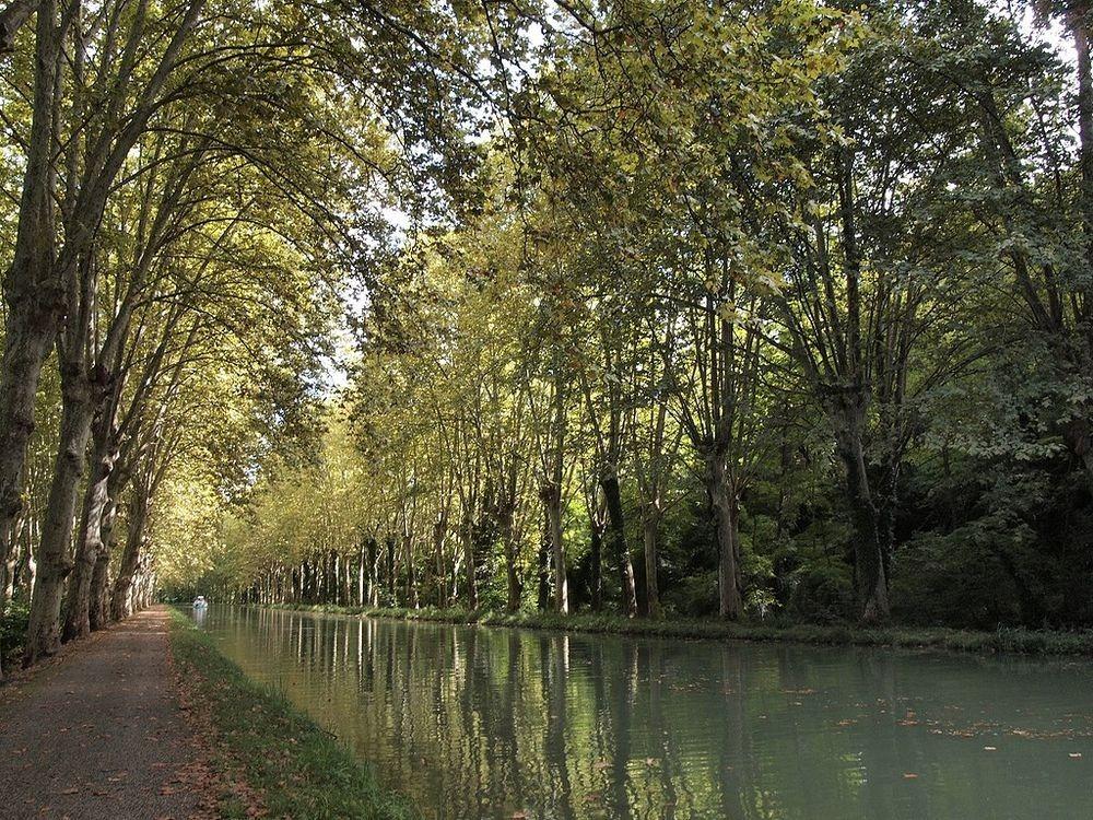 canal-du-midi-52